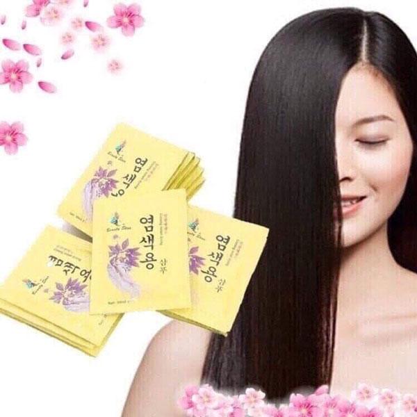 Thảo dược nhuộm tóc hồng sâm - Ginseng instant dyeing
